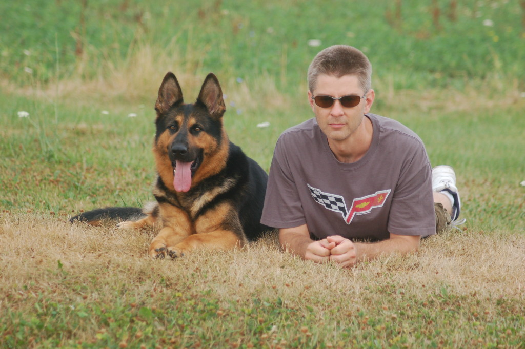 Trained Protection Dogs by CCPD